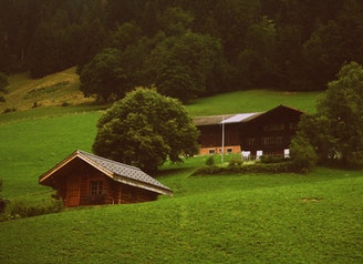 two-brown-wooden-cabins-in-green-grass
